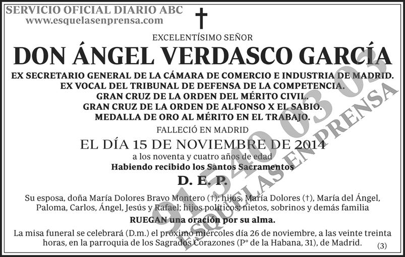 Ángel Verdasco García